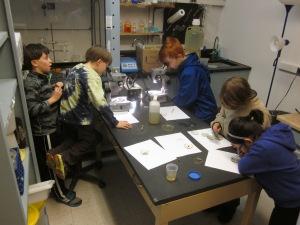 freshwater-ecology-lab